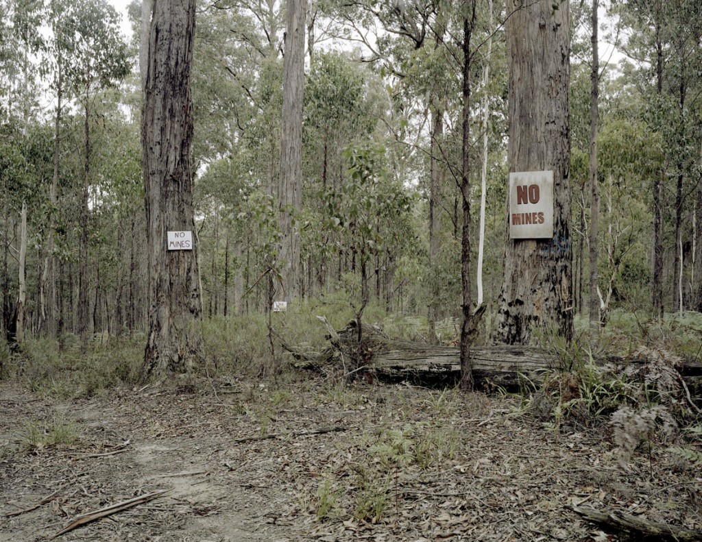Proposed Gold Mine, Wombat State Forest, VIC, 2013
